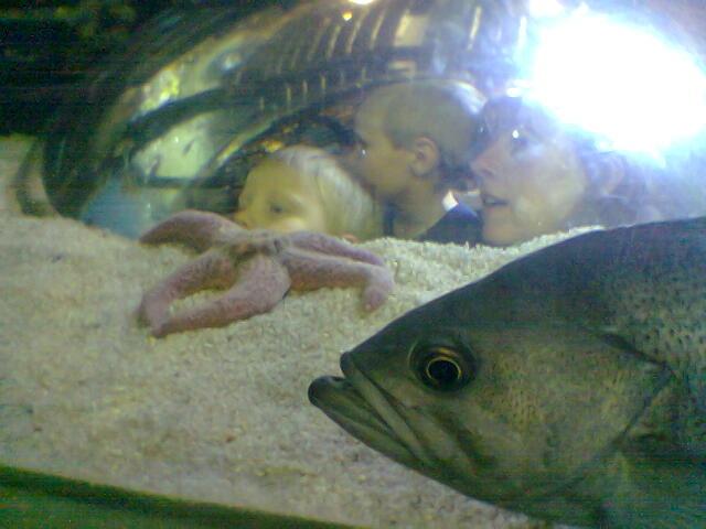 Nathan, Eddie, and Robbyn in an aquarium bubble