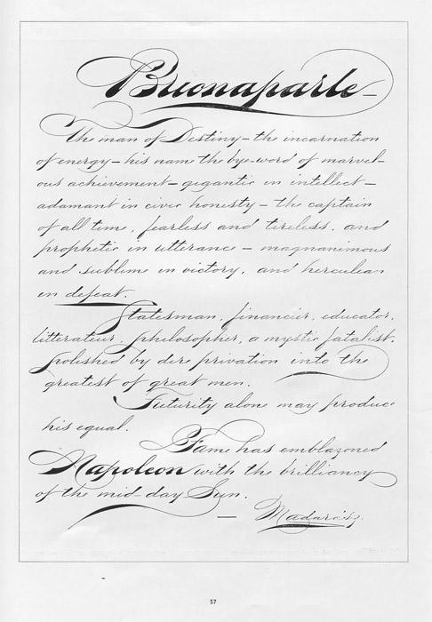 Madarasz Pens Napoleon